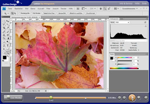 Video-Lektionen zu Photoshop CS4 kostenlos bei Galileo